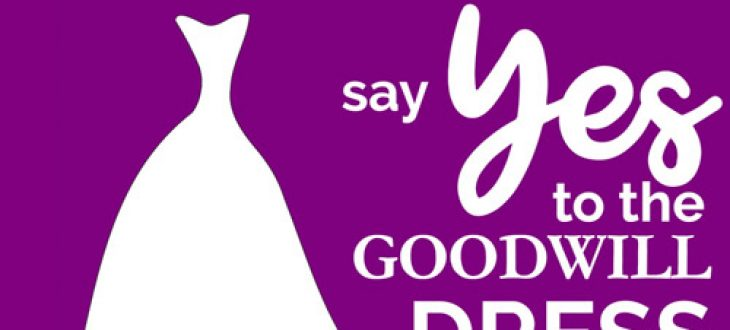 Say Yes to the Goodwill Dress!